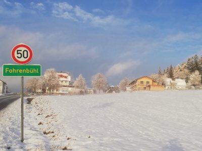 Adler_Winter_5